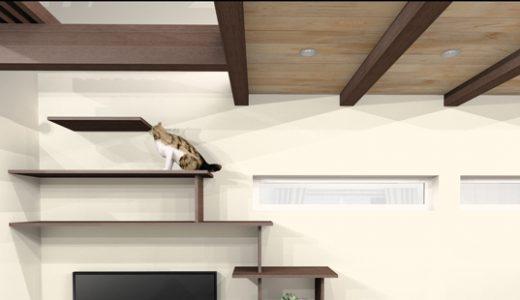 ネコと暮らす平屋の家