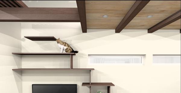 猫とテレビ台